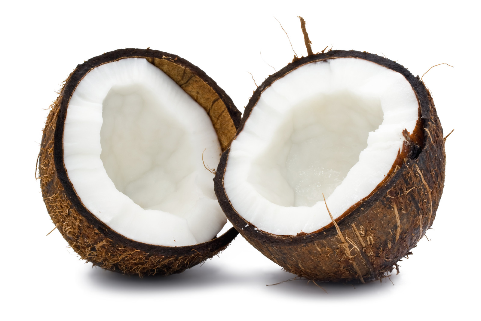 WELCOME TO INTERNATIONAL COCONUT